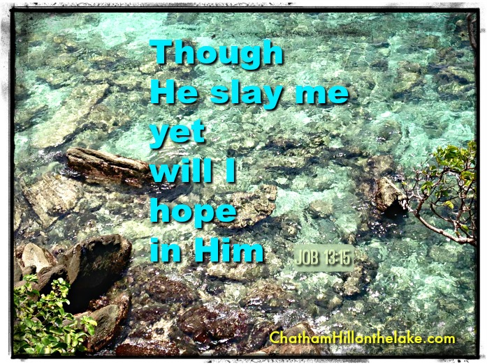 though He slay me, yet will I hope in Him