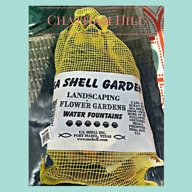 Sea Shells www.chathamhillonthelake.com