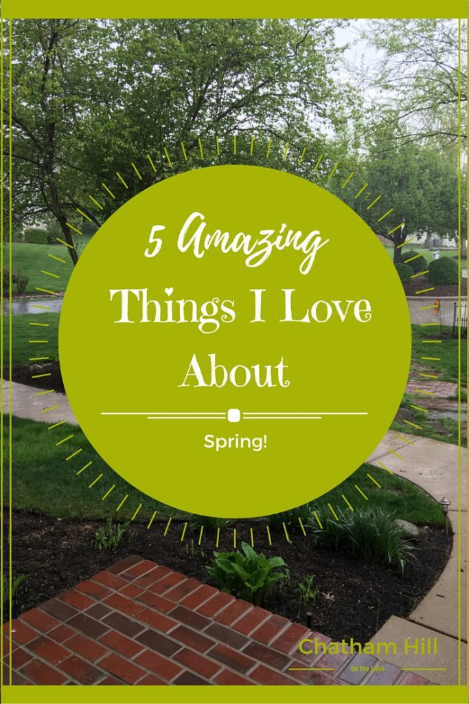 5 Amazing Things I love about Spring