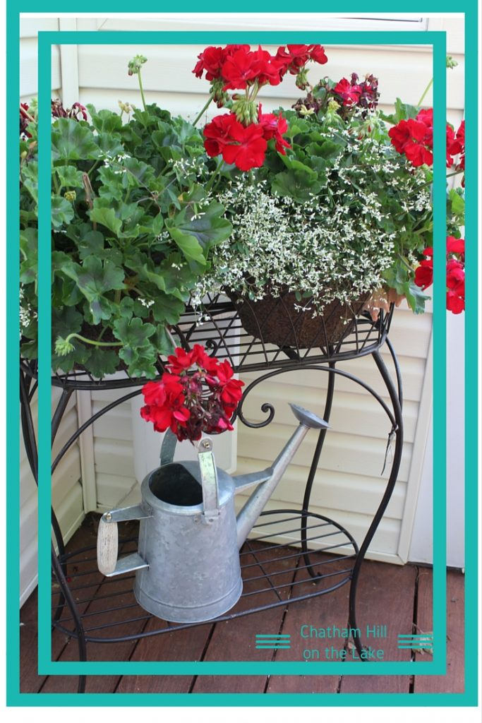 Geraniums and watering can www.chathamhillonthelake.com