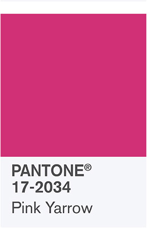 Pink Yarrow a favorite in the palette for 2017 Spring by Pantone www.chathamhillonthelake.com
