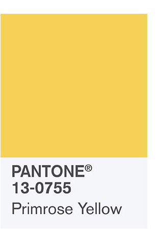 Primrose yellow pantone 2017 color palette www.chathamhillonthelake.com