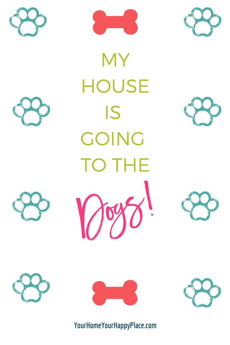 My New House Is Going To The Dogs!
